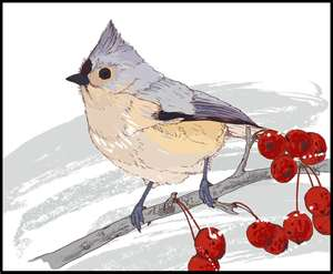 Bird and_berries