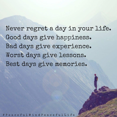 Never regret_a_day_500